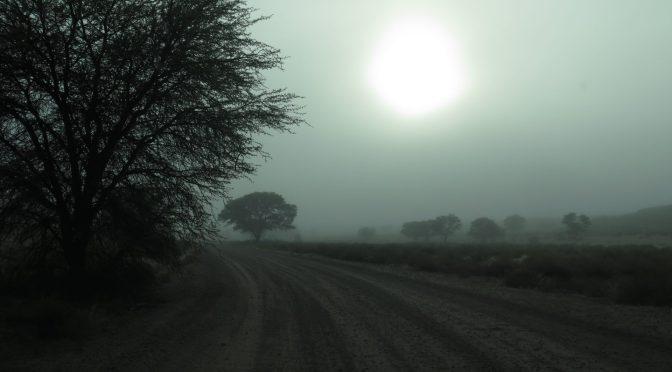 Mgła na pustyni